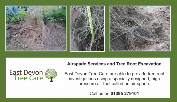 Airspade Services in Devon