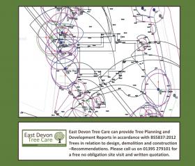 BS5837 2012 Site Plans