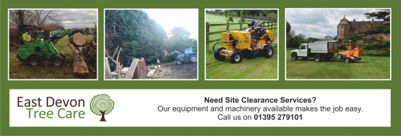 Site Clearance small