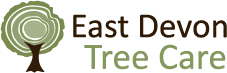 Devon Tree Surgeon